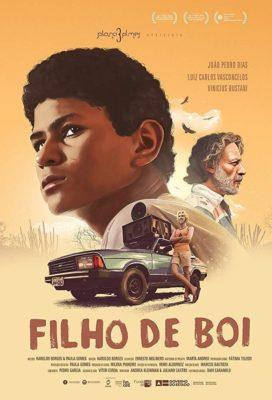 poster Filho de Boi